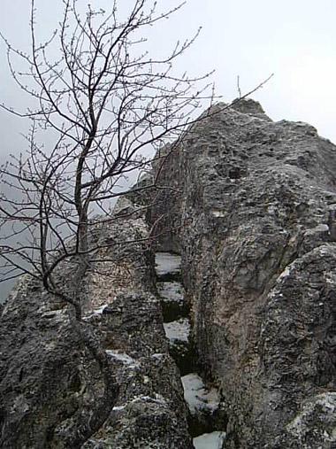 image-543